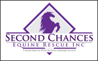 Second Chances Equine Rescue